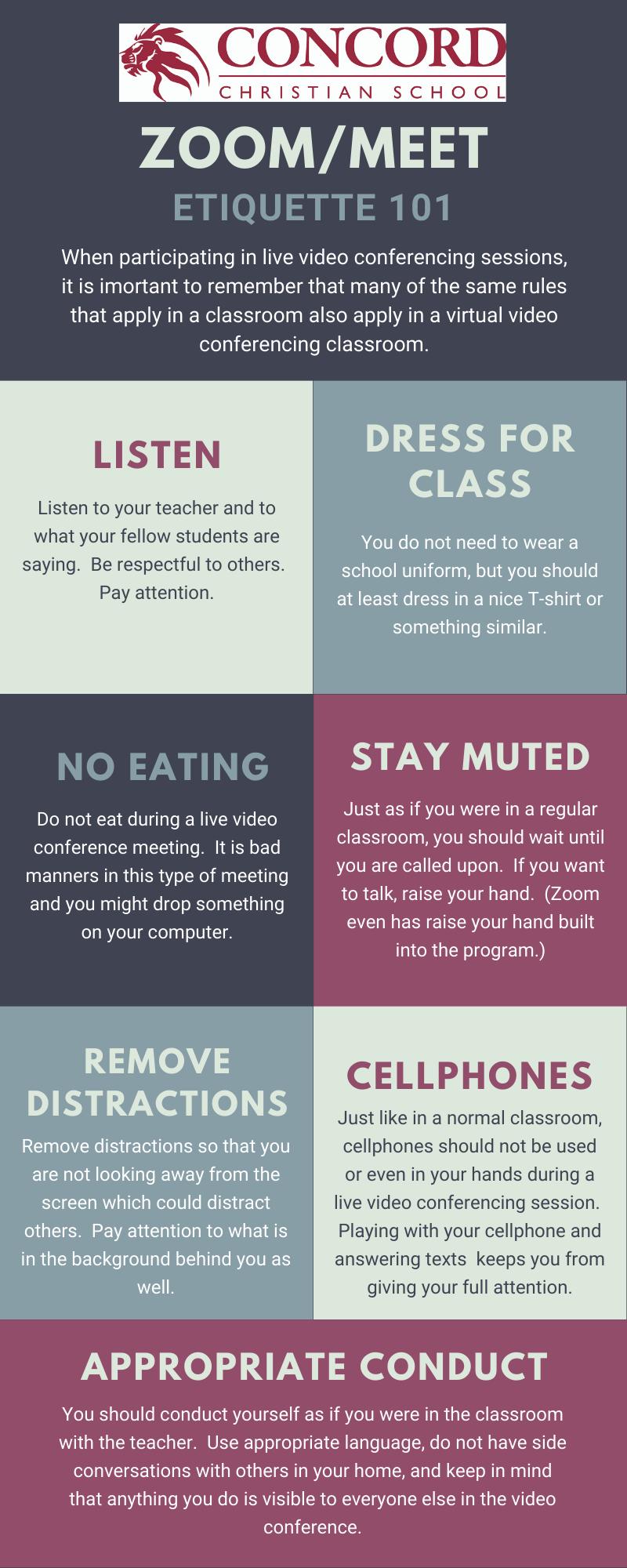 Zoom/Meet Etiquette 101